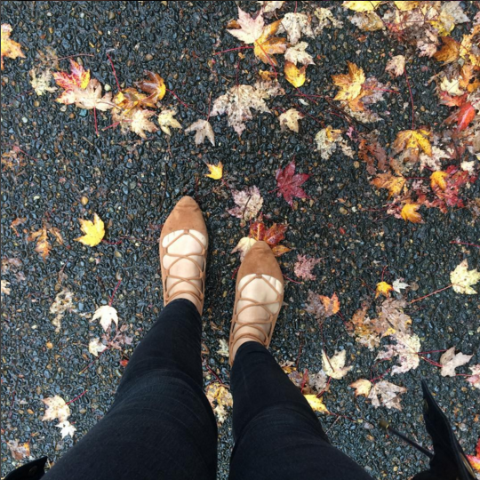 Fall Leaves and Lace Up Shoes