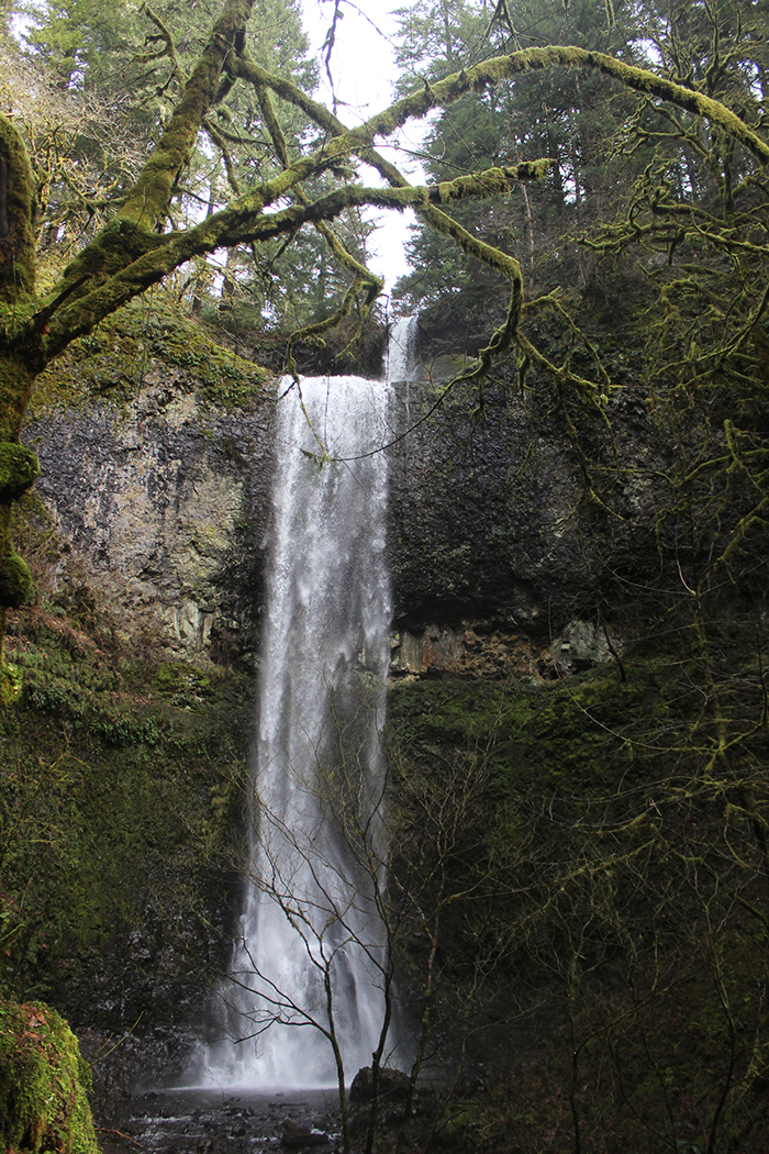 Double Falls, Silver Falls Hike, Oregon