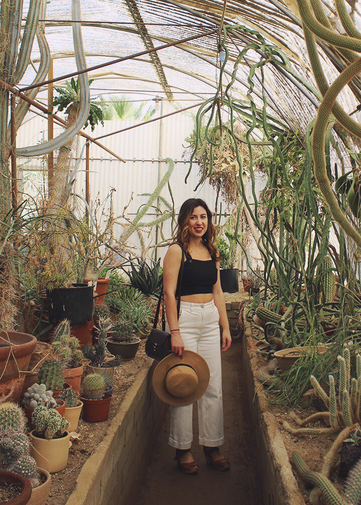 Everlane White Crop Pants an Apricity Crop Top _ Moorten Botanical Garden
